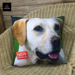 Personalised Suede Photo Cushion